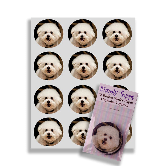 Bichon Frise Cupcake Toppers