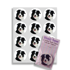 Border Collie Cupcake Toppers - SimplyCakeCraft