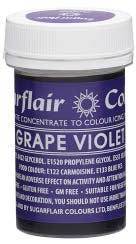 Grape Violet Concentrated Spectral Colour Paste 25g - SimplyCakeCraft