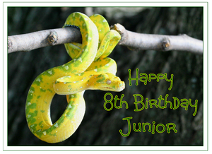 Personalised Snake Cake Topper Decoration - SimplyCakeCraft