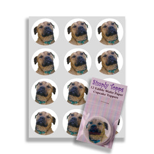 Staffordshire Bull Terrier Cupcake Toppers - SimplyCakeCraft
