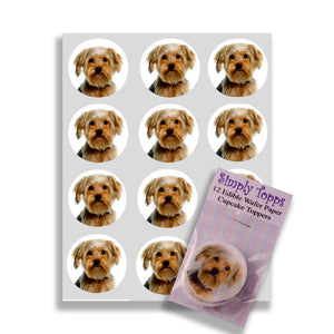 Yorkshire Terrier Cupcake Toppers - SimplyCakeCraft