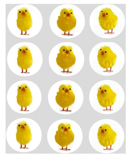 Fluffy Easter Chick Cupcake Toppers