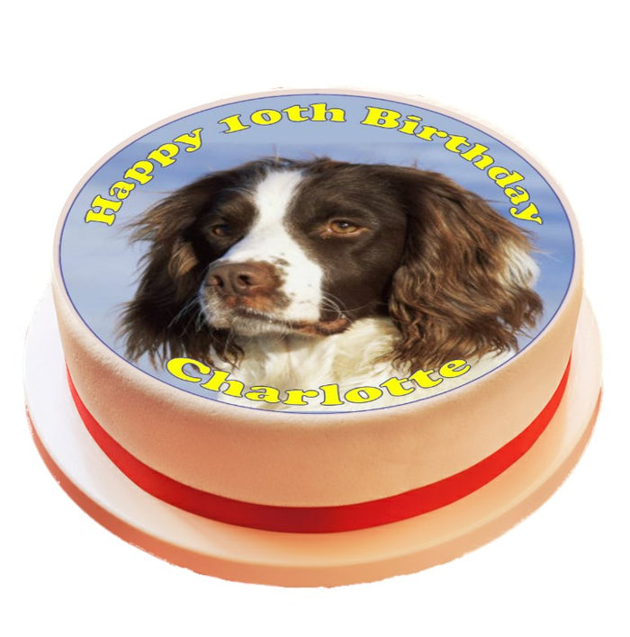 Personalised Springer Spaniel Cake Topper Decoration