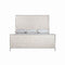 CAMA KING CAPIZ SHELL