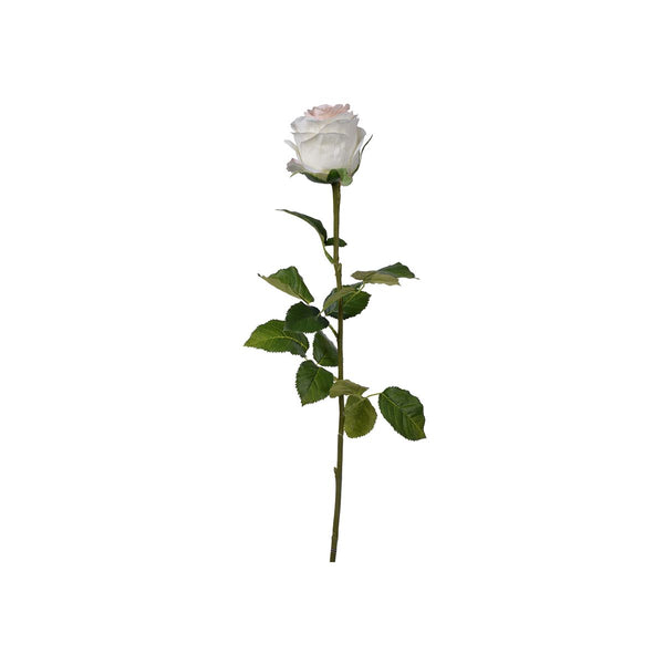 20 X 20 X 73cm  REAL TOUCH ROSE STEM, CREAM