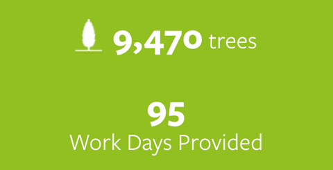 9,470 trees planted and 95 work days provided