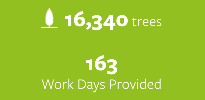 16.340 trees planted and 163 work days provided