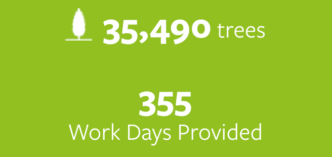 35,490 trees planted and 355 work days provided