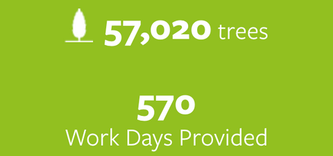 57,020 trees planted and 570 work days provided