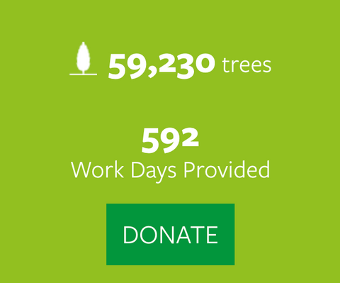 59,230 tree planted and 592 work days provided