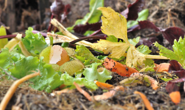 Fruit and vegetable scraps in a compost pile with dirt.