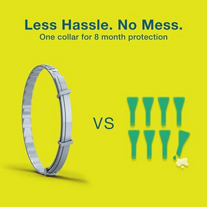 Pet insect repellent collar
