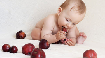 5 Benefits of Baby-Led Weaning that You Should Know