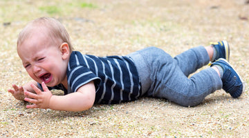 8 Reasons Why Your Toddler is Throwing a Temper Tantrum