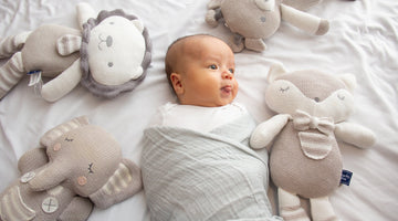 6 of the Best and Safest Baby Toys for Your Newborn