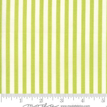 Essentially Yours Stripe Chartreuse 8652 72