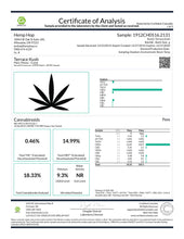 Load image into Gallery viewer, Terrace Kush CBD Cannabinoids Lab Results