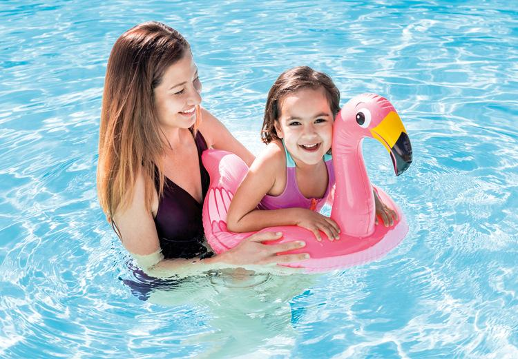 Flamingo Split Swim Ring