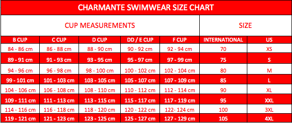 Elegant Neck Detail Swimsuit By Charmante