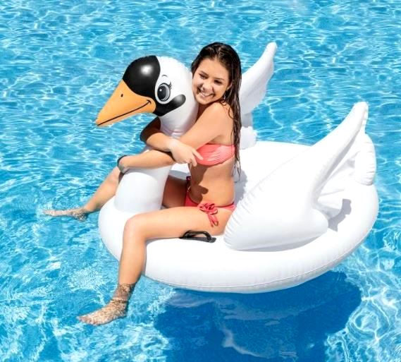 The Beach Company India - Shop Pool Floats online - Shop Pool inflatables online - Pool Loungers - Swan Pool Float