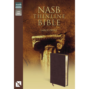 NASB Thinline Bible Large Print (Bonded Leather)