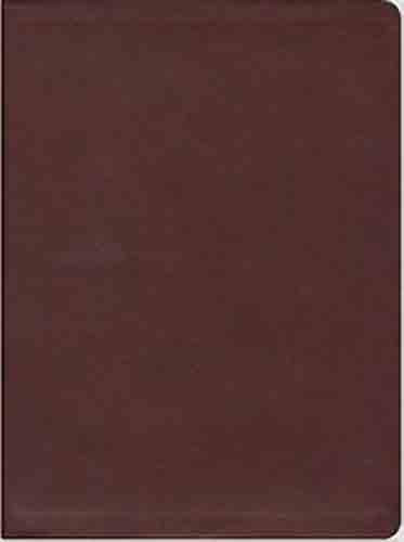 The Message Large Print Burgundy (Imitation Leather)