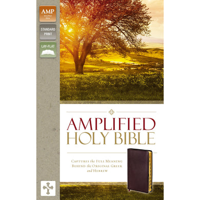 Amplified Holy Bible Indexed Burgundy (Bonded Leather)