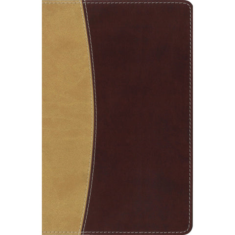 Amplified Compact Holy Bible Camel / Burgundy (Imitation Leather)