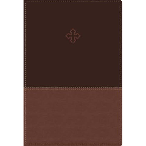 Load image into Gallery viewer, Amplified Study Bible Indexed Brown (Imitation Leather)