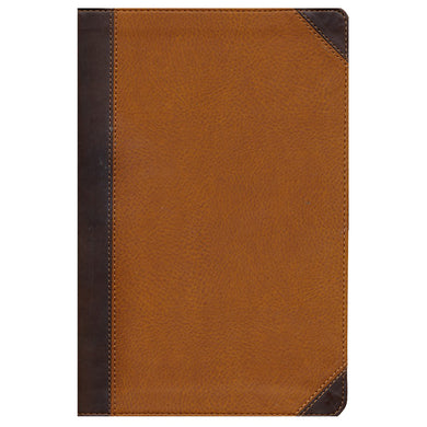 NIV Zondervan Study Bible Indexed Tan / Brown (Imitation Leather)