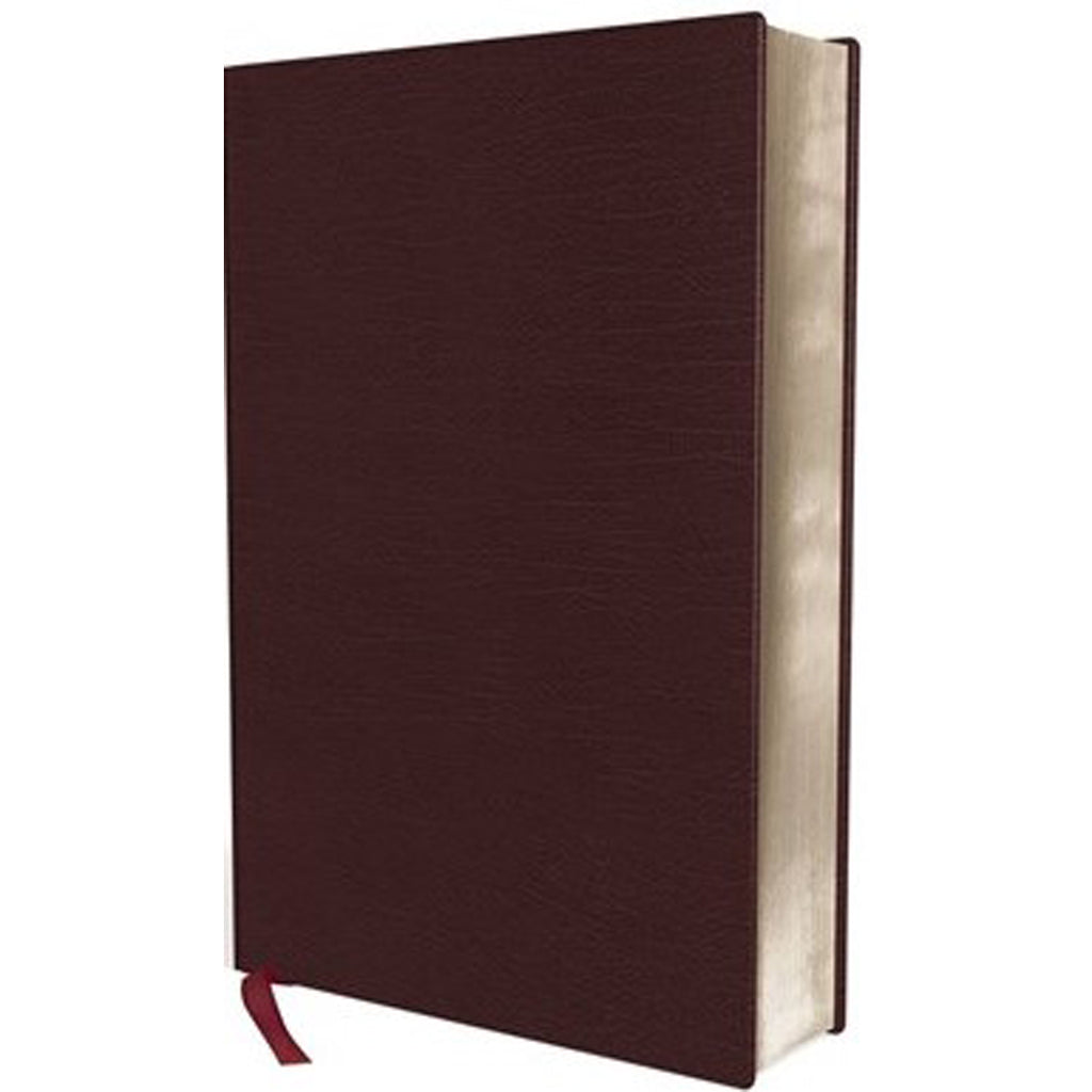 NIV Thinline Bible Large Print Burgundy Red Letter Edition(Comfort Print)(Bonded