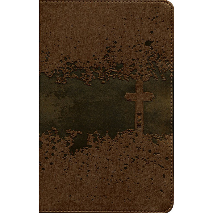 NIV Kids Visual Study Bible Full Color Interior Bronze (Imitation Leather)