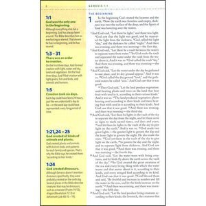 NIV Kids Visual Study Bible Full Color Interior (Hardcover)