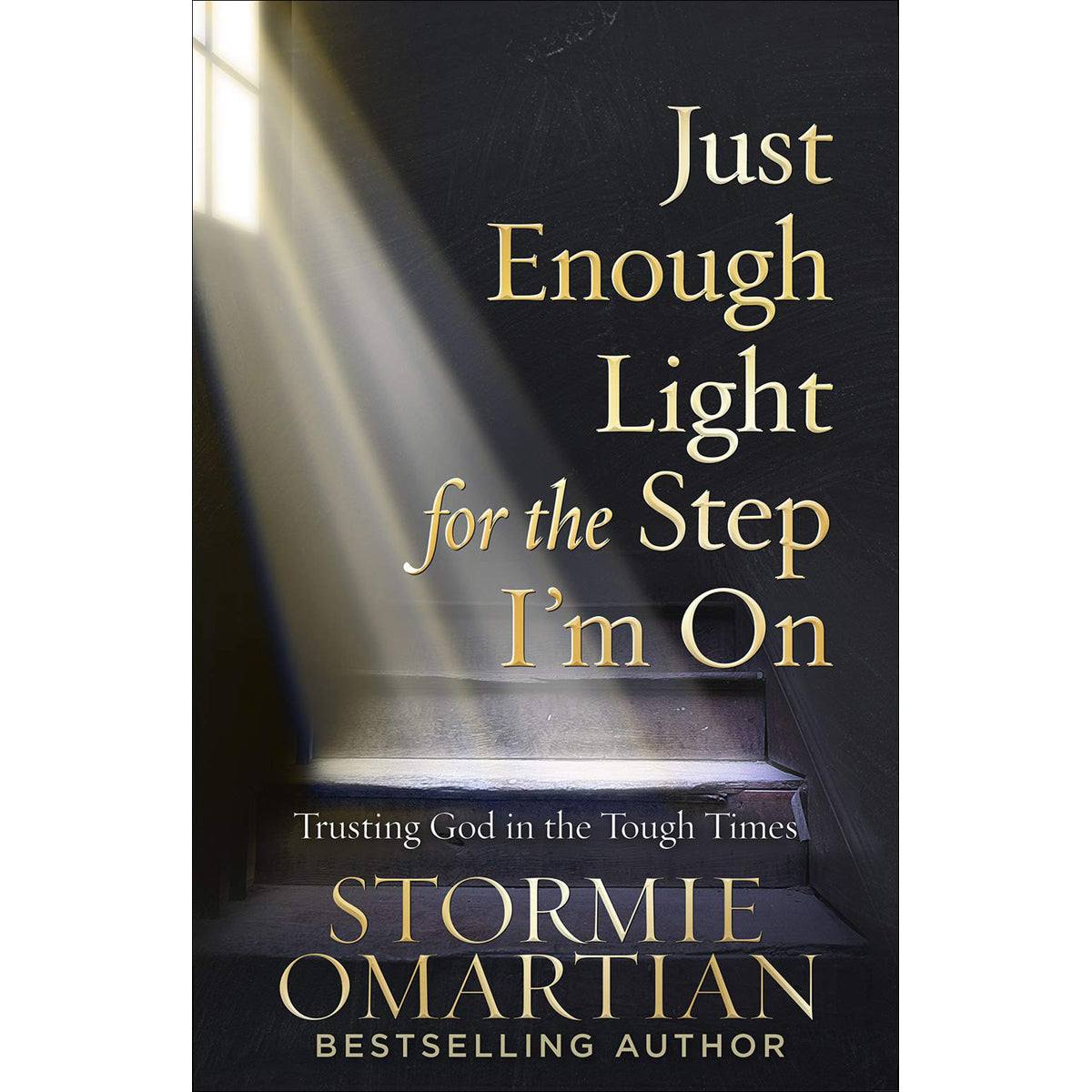 Just Enough Light For The Step I'm On (Paperback)