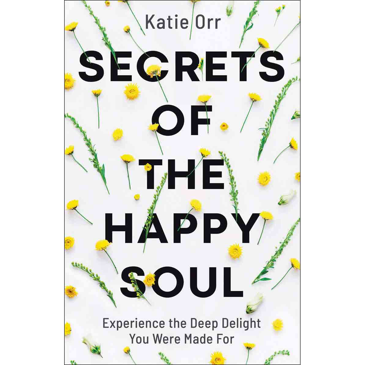 Secrets Of The Happy Soul: Experience The Deep Delight You Were Made For (Paperback)