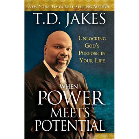 When Power Meets Potential (Paperback)