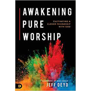 Awakening Pure Worship: Encountering God In The Way You Always Hoped (Paperback)