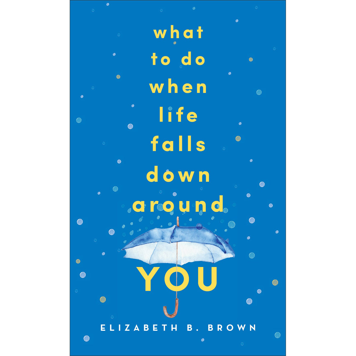 What To Do When Life Falls Down Around You (Paperback)