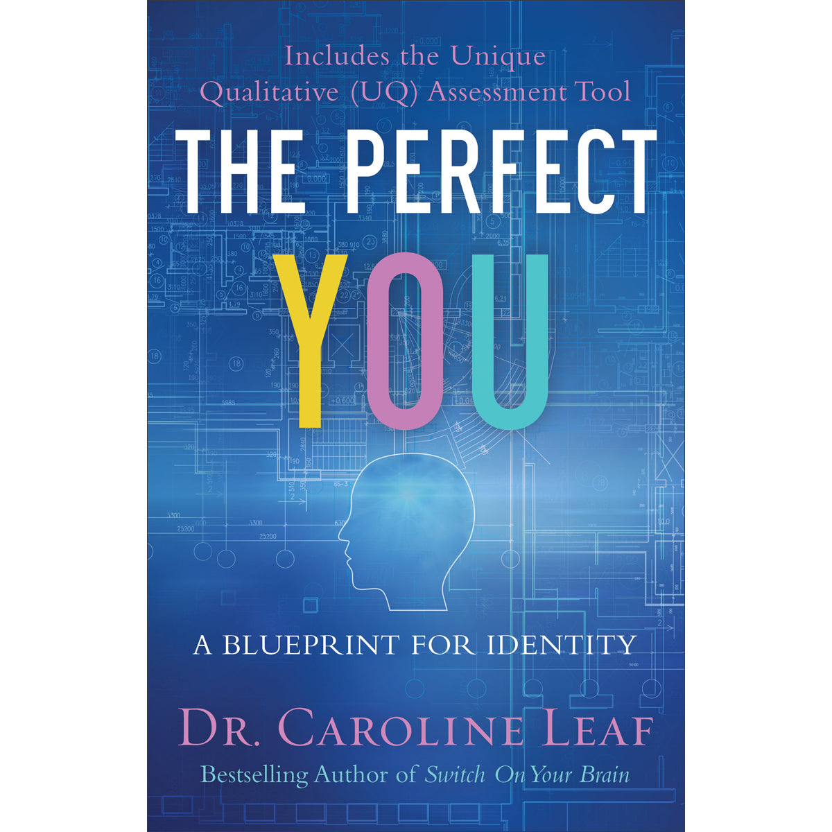 The Perfect You: A Blueprint For Identity (Hardcover)