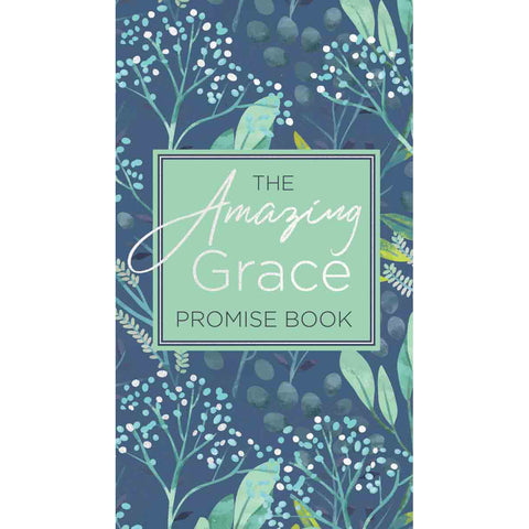 Load image into Gallery viewer, The Amazing Grace Promise Book (Paperback)