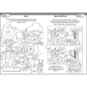Bible Story Activity Fun (Paperback)