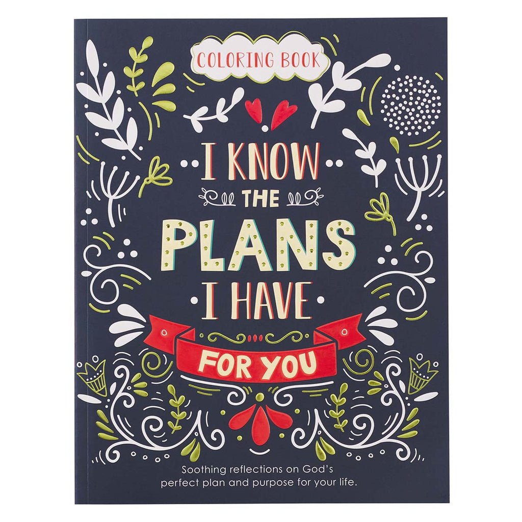 I Know The Plans Coloring Book (Paperback)