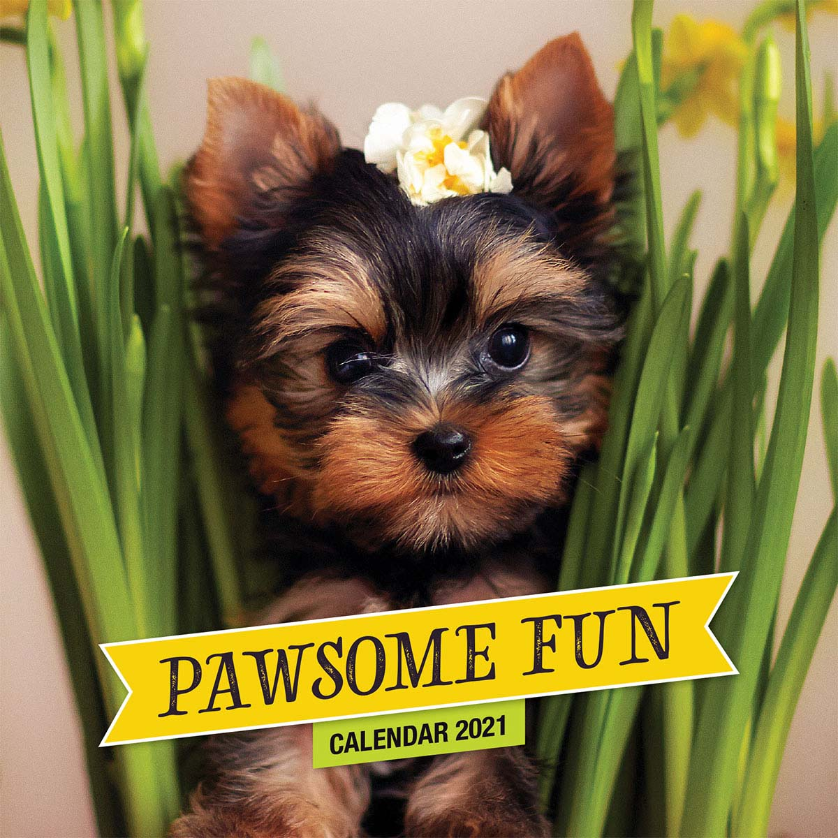 Pawsome Fun (Small Calendar 2021)