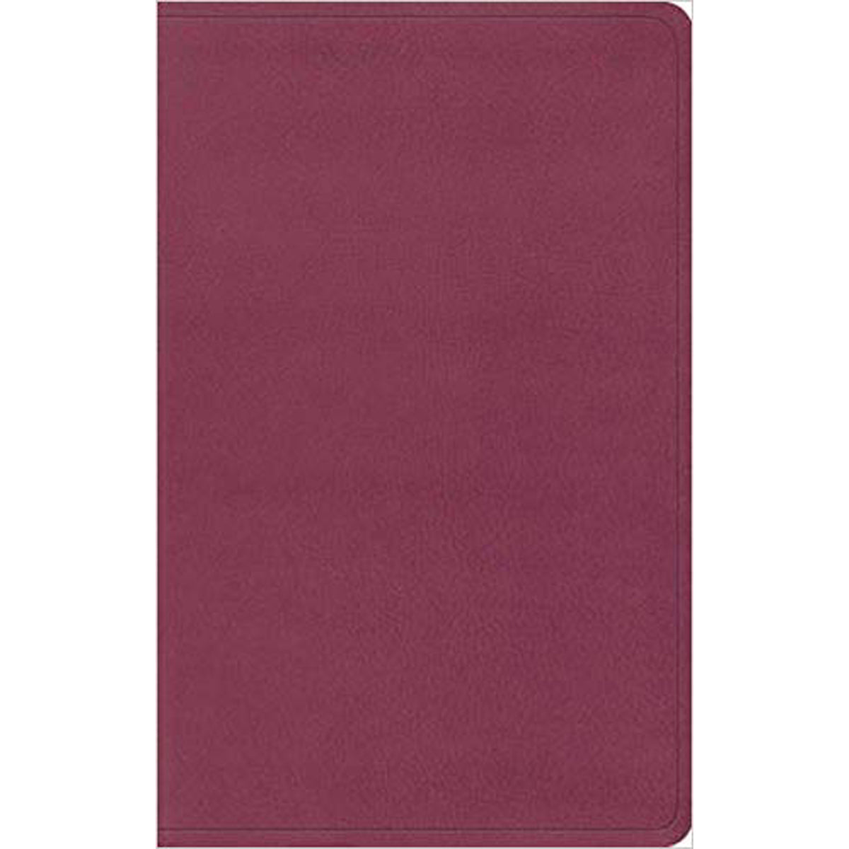 ESV Value Thinline Bible Pink (Imitation Leather)