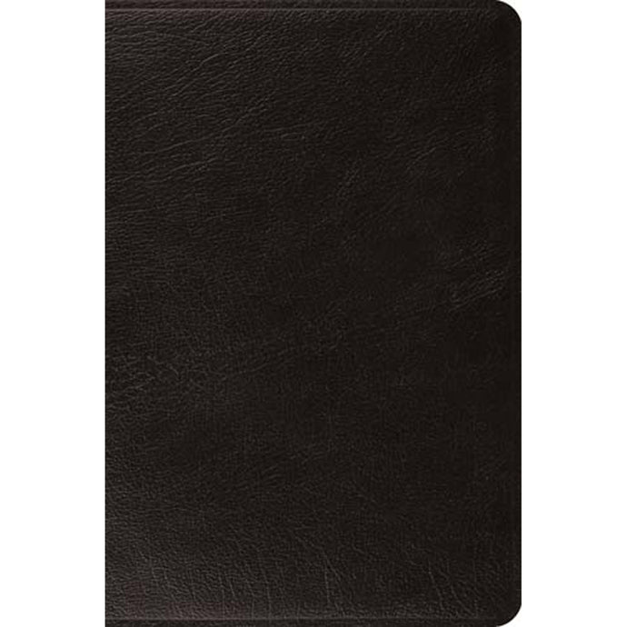 ESV Large Print Bible Leather With Ribbon Marker Black (Genuine Leather)