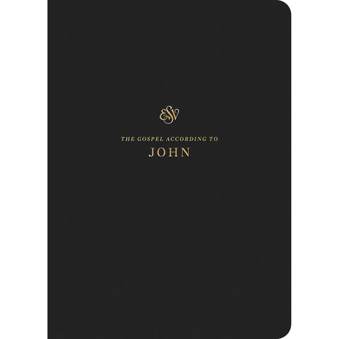 Load image into Gallery viewer, ESV Scripture Journal John (Paperback)