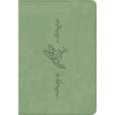 ESV Kid's Bible Compact (Bird Of The Air)(Imitation Leather)
