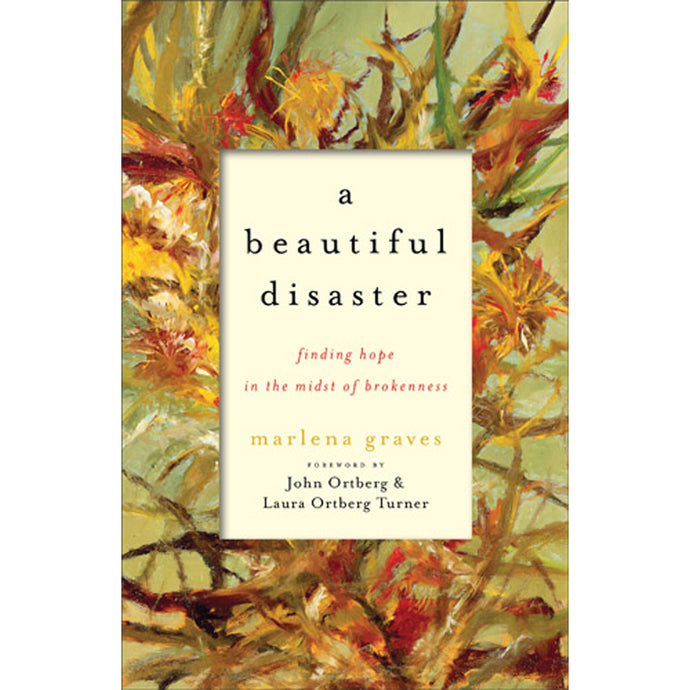 A Beautiful Disaster (Paperback)