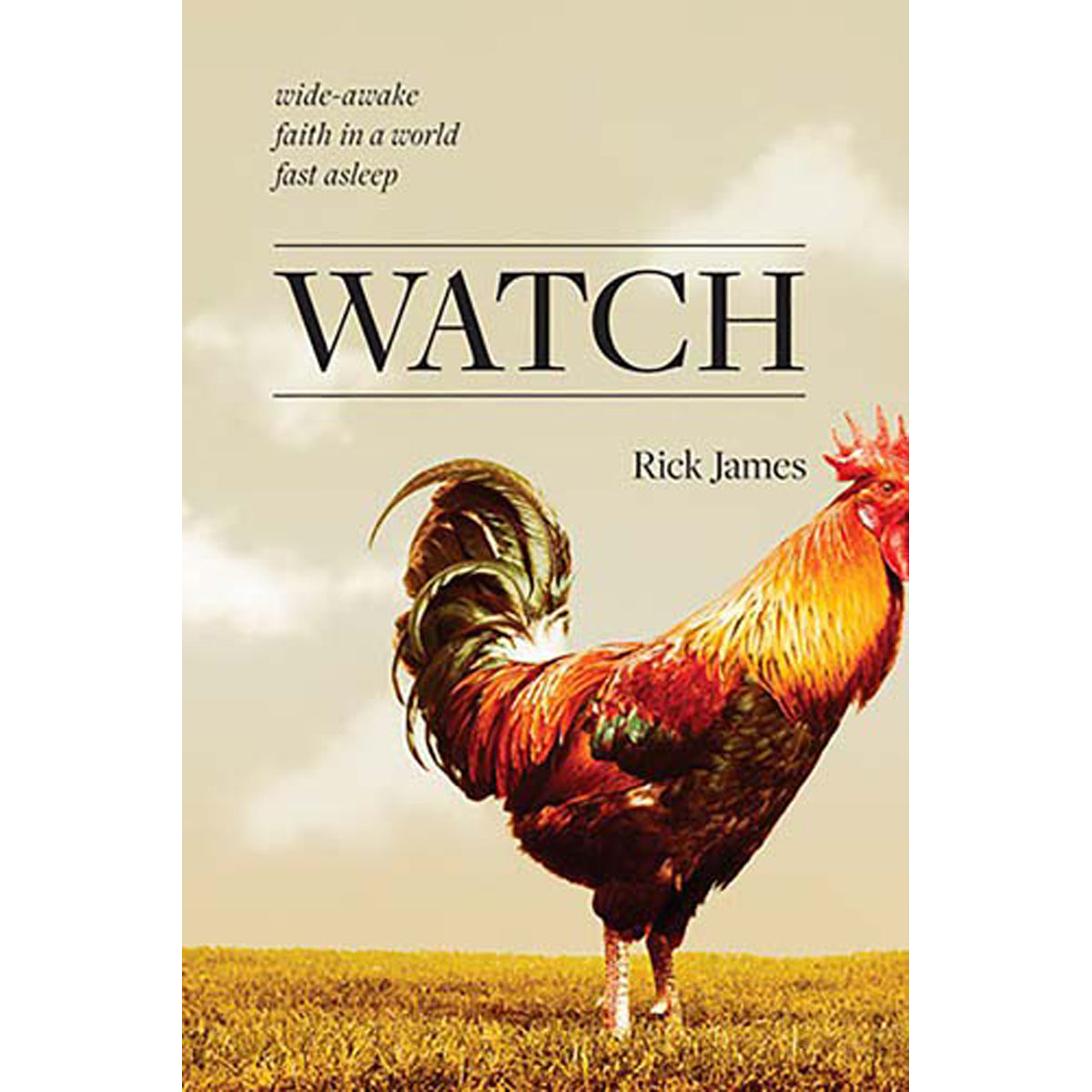 Watch (Paperback)